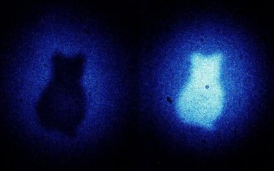 "An alternate take on ""Picturing Schrodinger's cat and Quantum Imaging"""